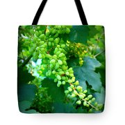 Backyard Garden Series - Young Grapes Tote Bag by Carol Groenen