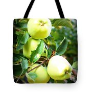 Backyard Garden Series- Golden Delicious Apples Tote Bag