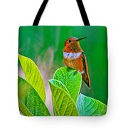 Backyard Hummingbird #22 Tote Bag