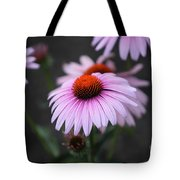 Backyard Wonders Tote Bag