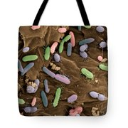 Bacteria In Dog Feces, Sem Tote Bag