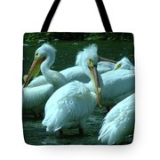 Bad Hair Day At The Pelican Social Gathering  Tote Bag
