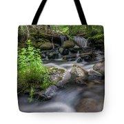 Badger Creek #2 Tote Bag