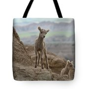 Badlands Dynamic Duo Tote Bag