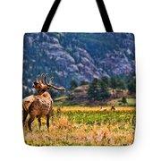 Badlands Elk  Tote Bag