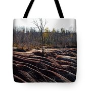 Badlands In Autumn Tote Bag