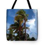 Bahamian Breeze Tote Bag