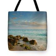 Bahia Honda Shoreline Tote Bag