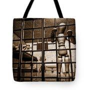 Bail Denied  Tote Bag