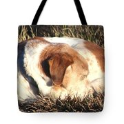 Bailey Resting Tote Bag
