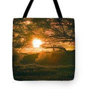 Baja Sunset Tote Bag