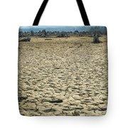 Baker Lake Desert  Tote Bag