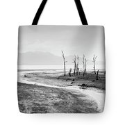 Bako National Park At Low Tide. Tote Bag