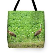 Balance And Majesty Tote Bag