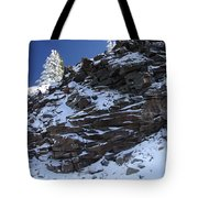 Balance Of Nature Tote Bag