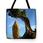 Balancing Act Tote Bag
