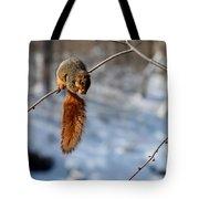 Balancing Squirrel Tote Bag