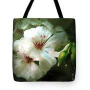 Balcony Beauty Tote Bag