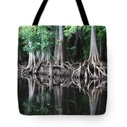 Bald Cypress Trees Along The Withlacoochee River Tote Bag