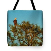 Bald Eagle Burnt Store Marina Florida Tote Bag