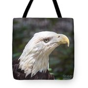 Bald Eagle Close Up Tote Bag