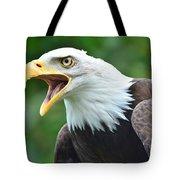 Bald Eagle Close Up Tote Bag