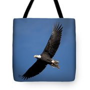 Bald Eagle I Tote Bag