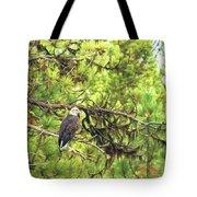 Bald Eagle In A Pine Tree, No. 5 Tote Bag