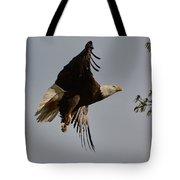 Bald Eagle In Flight 031520168790 Tote Bag