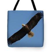 Bald Eagle In Flight 031520169113 Tote Bag