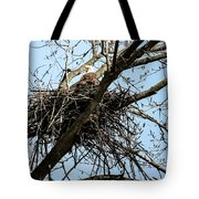 Bald Eagle In The Nest Tote Bag