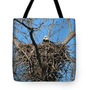 Bald Eagle Lookout  3661 Tote Bag