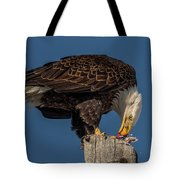 Bald Eagle Lunch Tote Bag