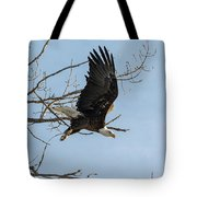 Bald Eagle Makes An Aggressive Dive Tote Bag