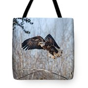 Bald Eagle Near Itasca Tote Bag