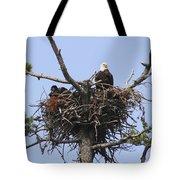 Bald Eagle Nest Tote Bag