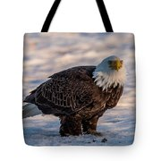 Bald Eagle Over Its Prey Tote Bag