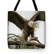 Bald Eagle Picking Up Fish Tote Bag