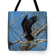 Bald Eagle Pushes Off For Launch Tote Bag