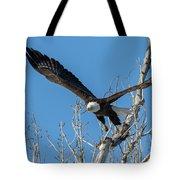 Bald Eagle Shows Its Focus Tote Bag