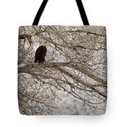 Bald Eagle-signed-#4879 Tote Bag
