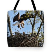 Bald Eagle Taking Fish To Nest 031520169678 Tote Bag