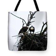 Bald Eagles Along The Delaware River Tote Bag