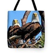 Bald Eagles In Nest Tote Bag