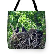 Bald Eaglet's 5 Wks 2 Tote Bag