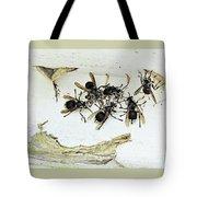 Bald Faced Hornets Tote Bag