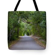 Bald Head Island Study 5 Tote Bag