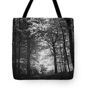 Baldringe Meadows Tote Bag