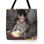 Balinese Baby Monkey Eating Tote Bag