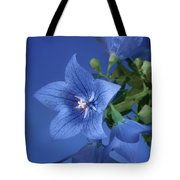Balloon Flowers - Blooms And Buds Tote Bag